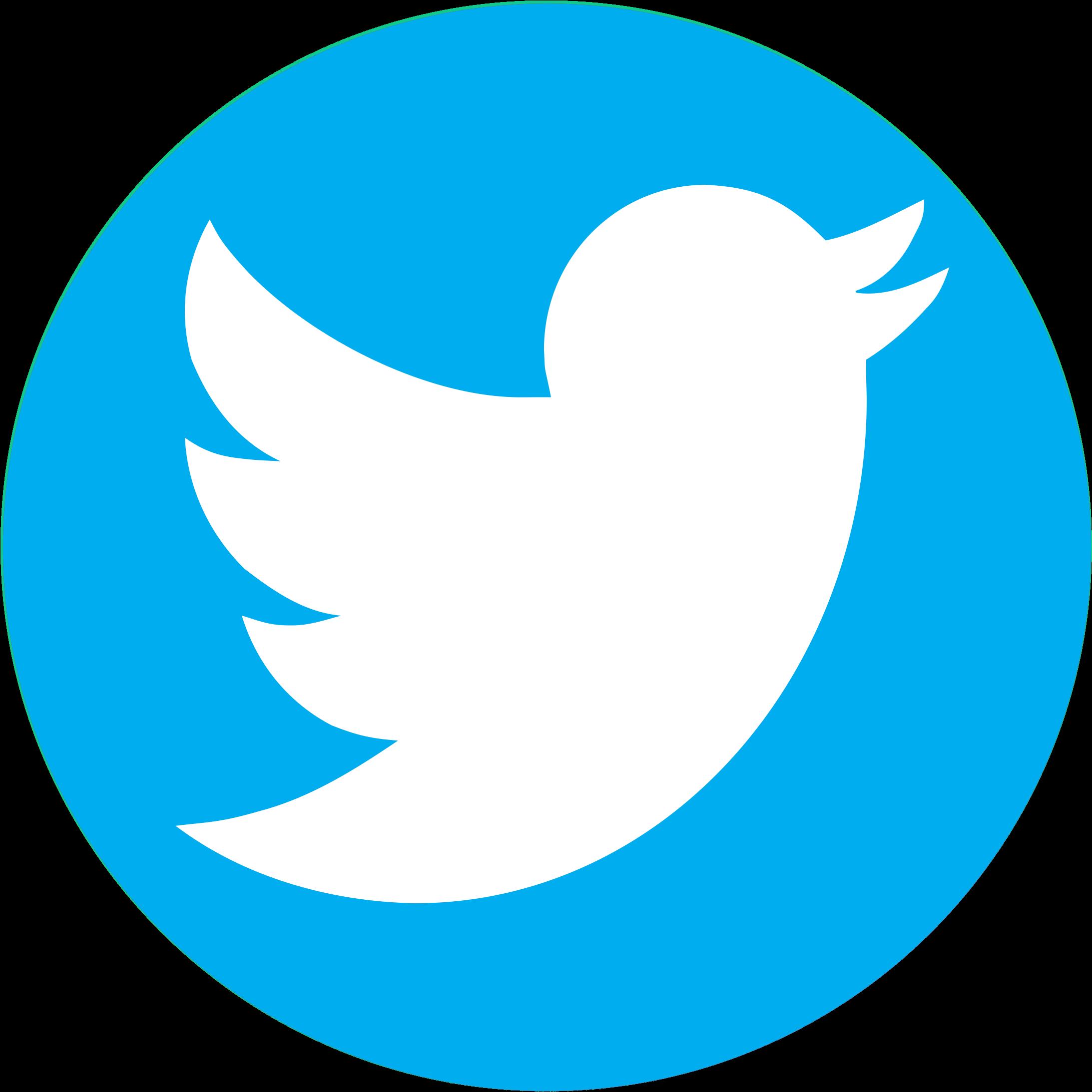 pnglot.com-twitter-bird-logo-png-139932